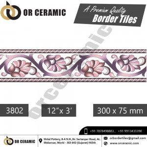 3802 Digital Border Tiles | OR Ceramic Morbi